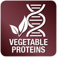 Rich in vegetal proteins - Relieves impaired hepatic function