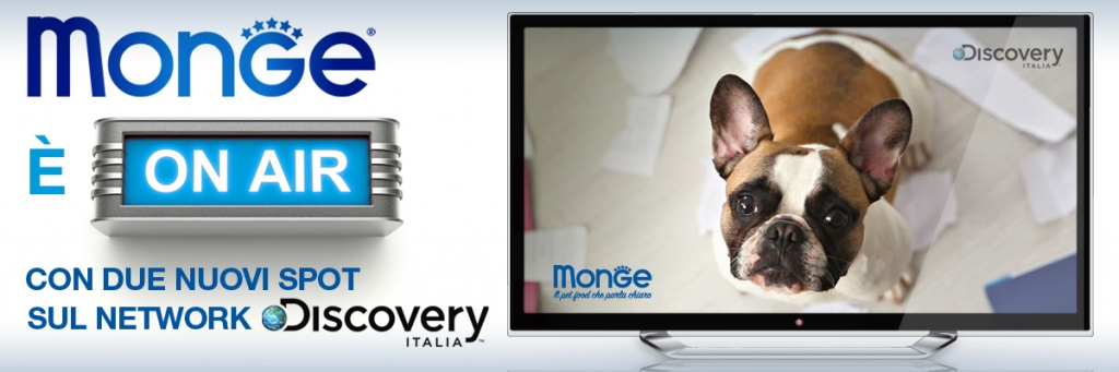 news discovery immagine